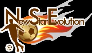 NSE-Logo png